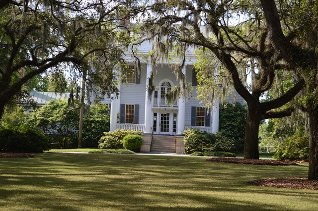 Visit a plantation house like Mcleod Plantation.