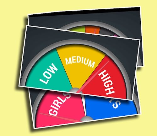 Stage Gauge - Get your students cheering for whatever because you control the sections and the needle!
