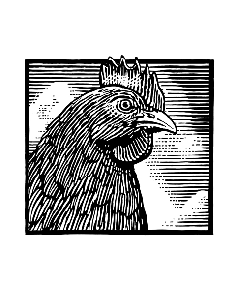 I call this an engraving style. It appears to be done in woodcut or linoleum cut print