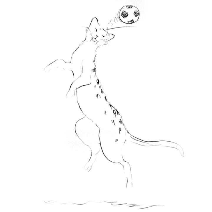 Leopard-Soccer.jpg