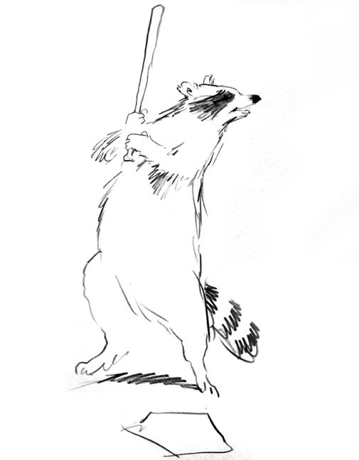 Raccoon-Baseball.jpg