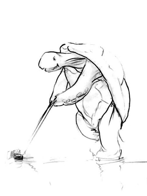 Turtle-Hockey.jpg