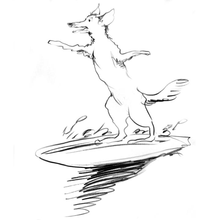 Coyote-Surfing.jpg
