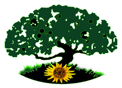HGSA logo (2).png
