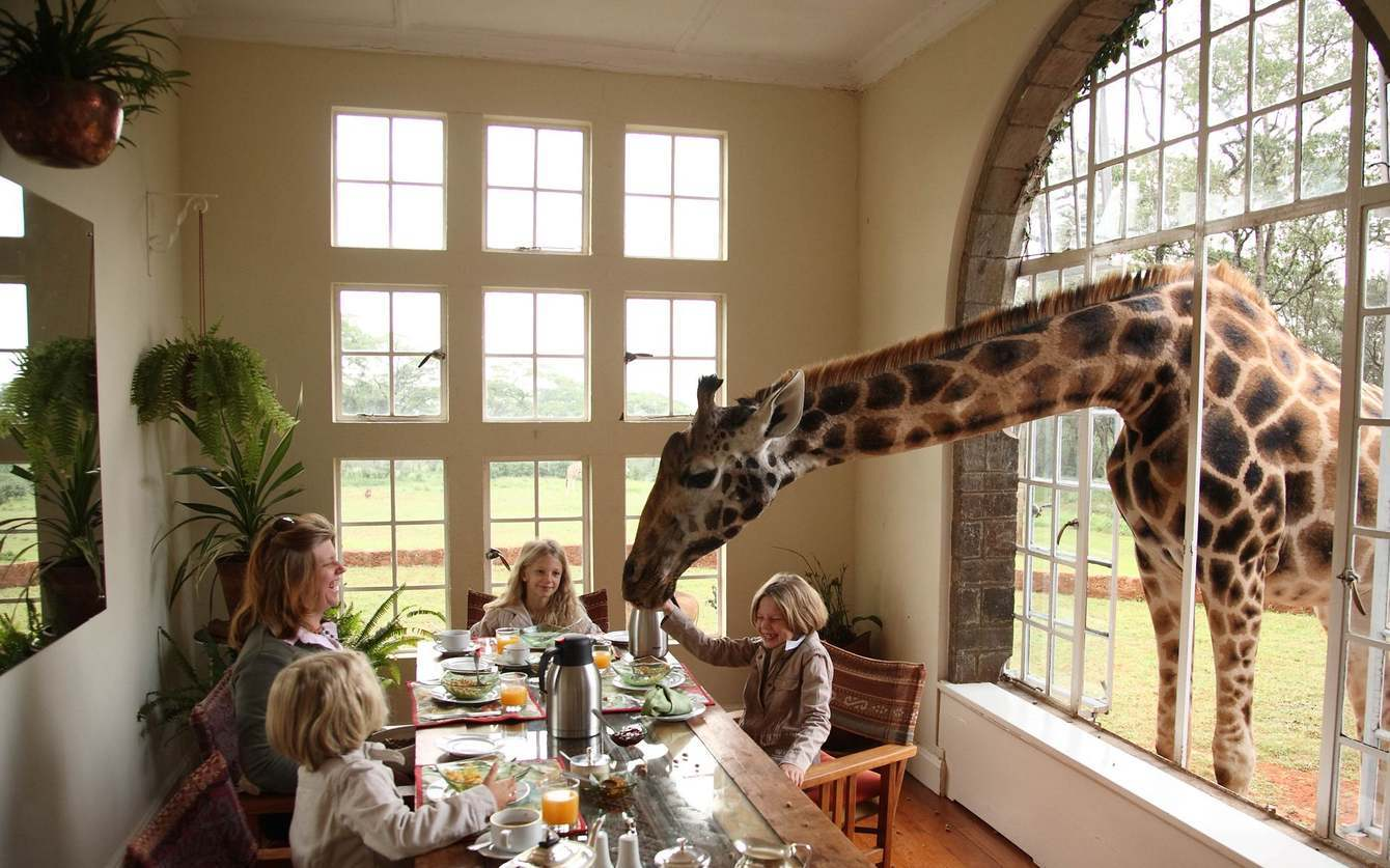 Giraffe Lodge.jpg
