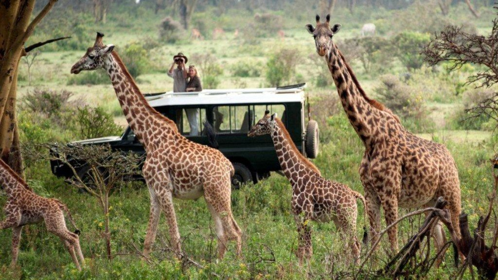 Featured-Masai-Mara-Game-Reserve.jpg