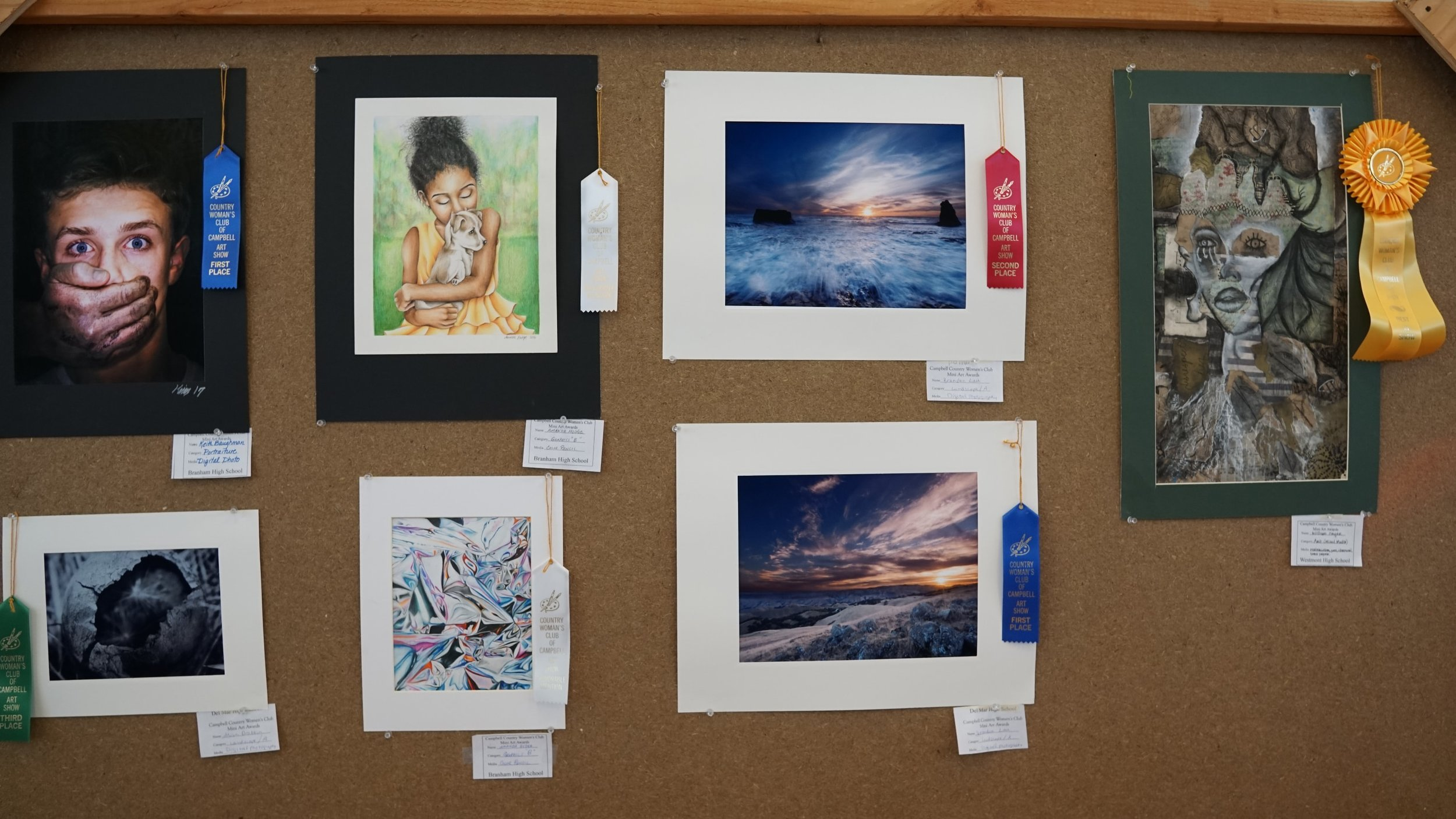 Annual Art Show & Competition
