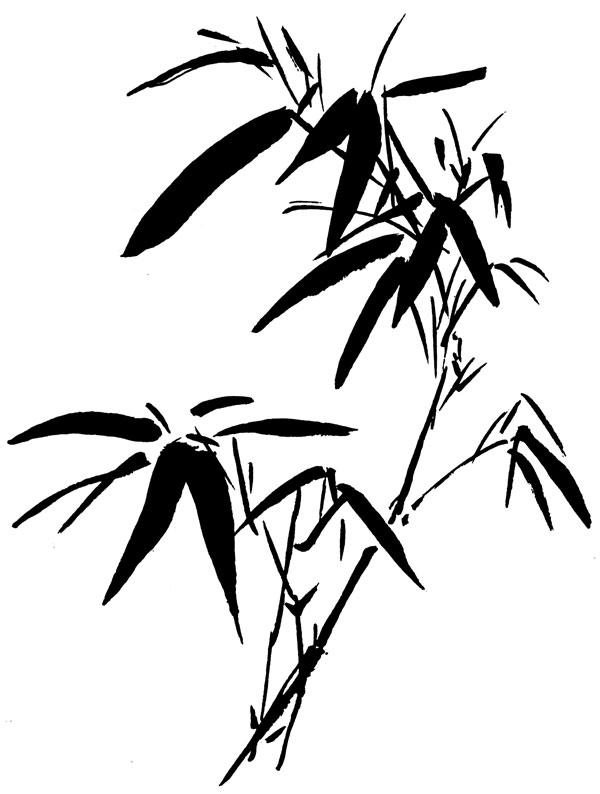 bamboo3.jpg
