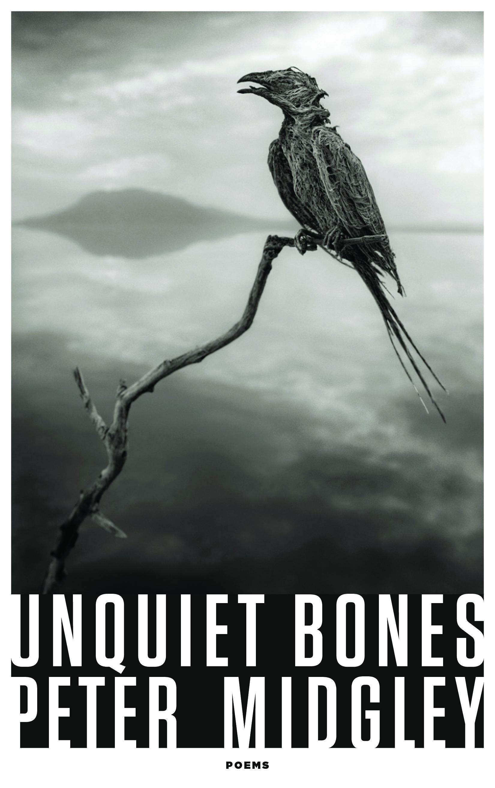 Unquiet Bones cover.jpg