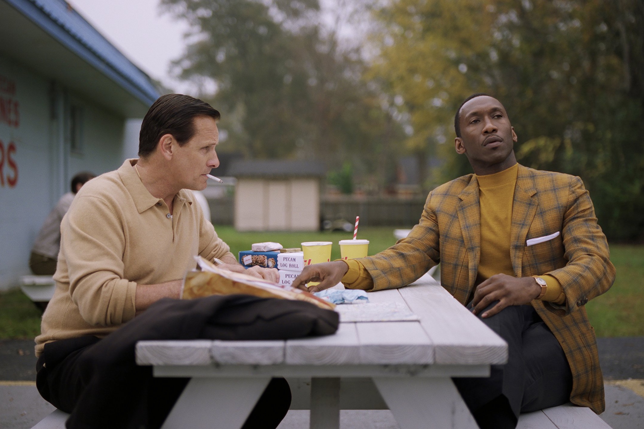"Still from the feature film ""Green Book"", 2018."