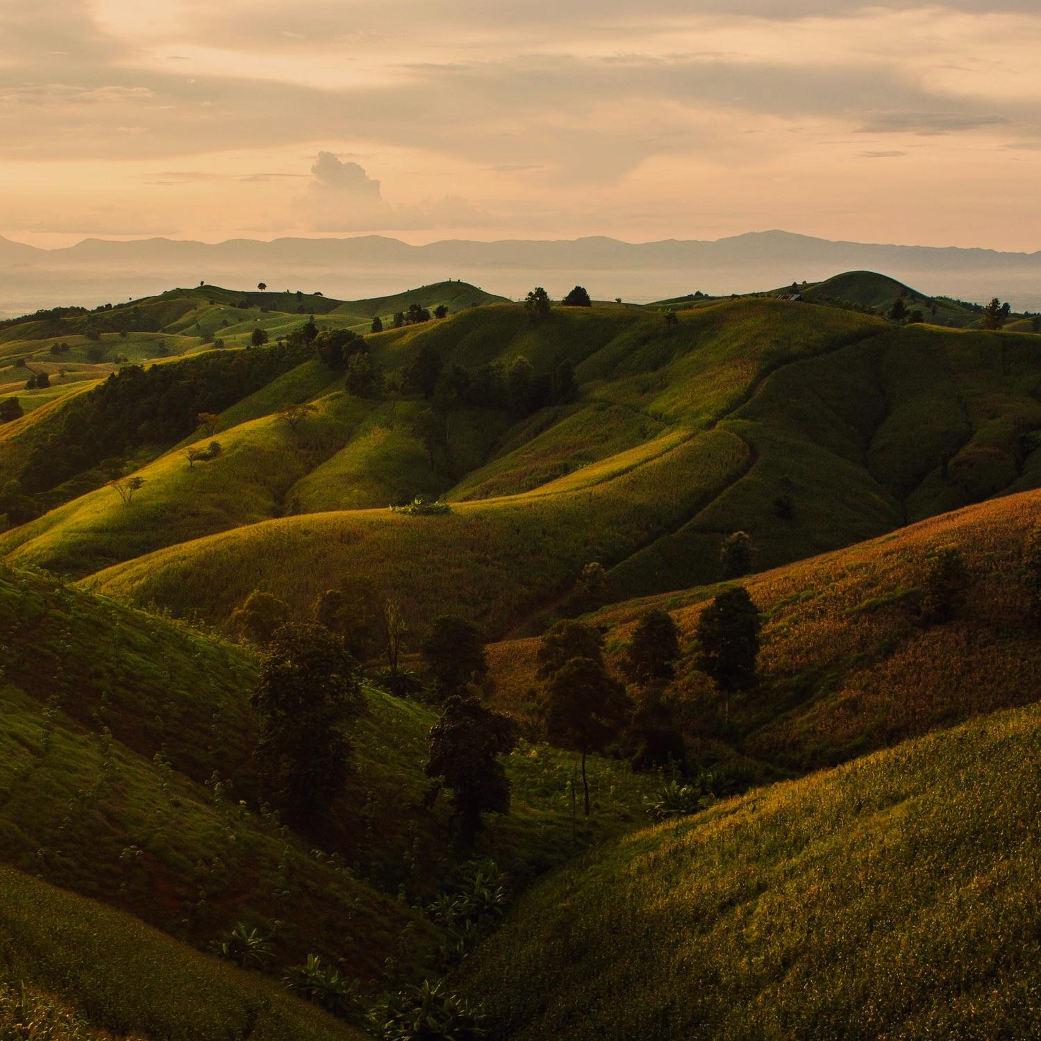 Rolling Hills -