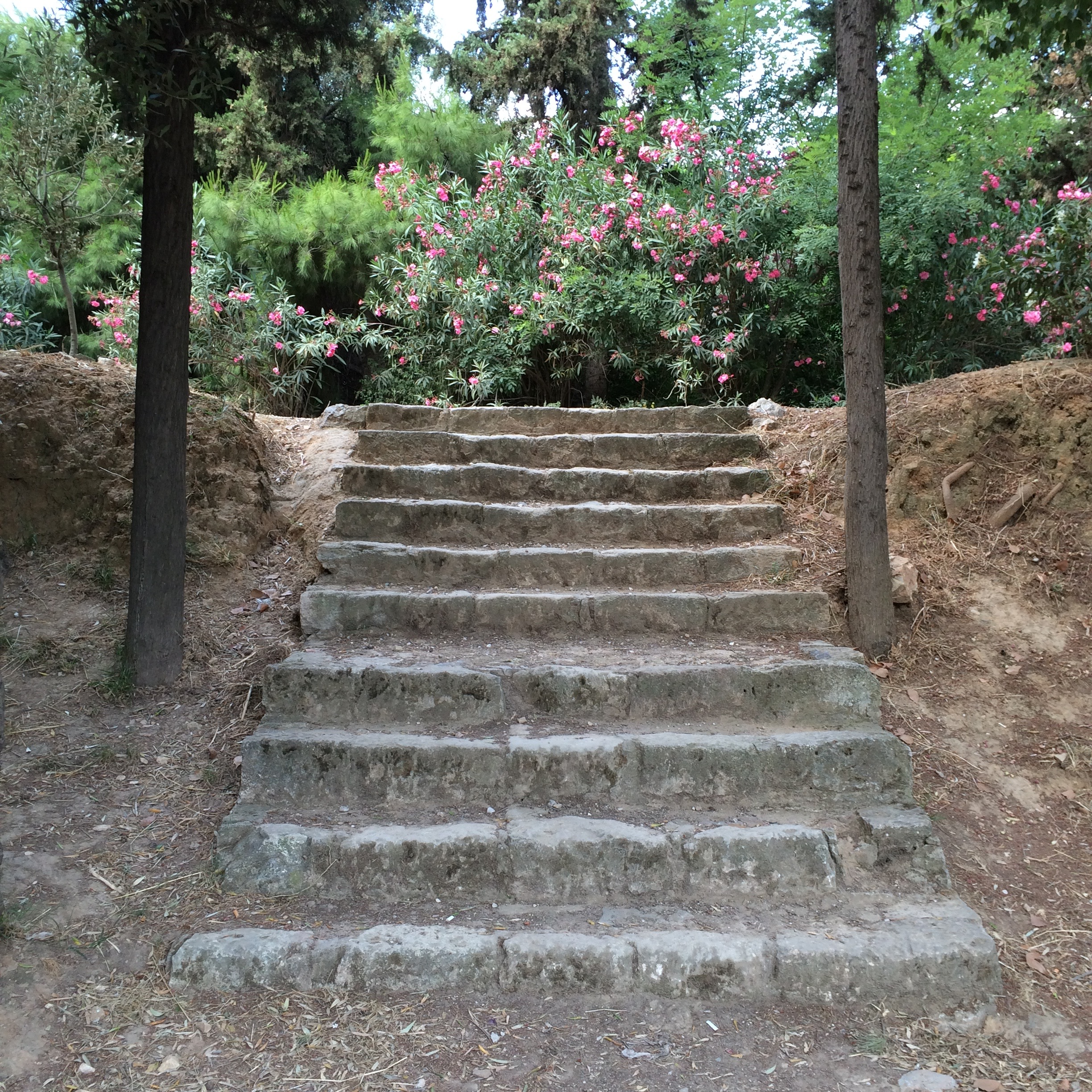 Ancient stairway next to the site of Plato's Academy in Athens.