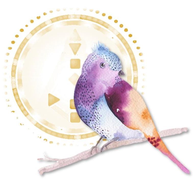 human design bird.JPG