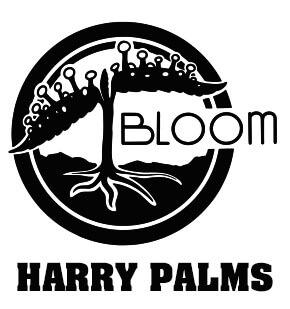 harry-palms-1.jpg