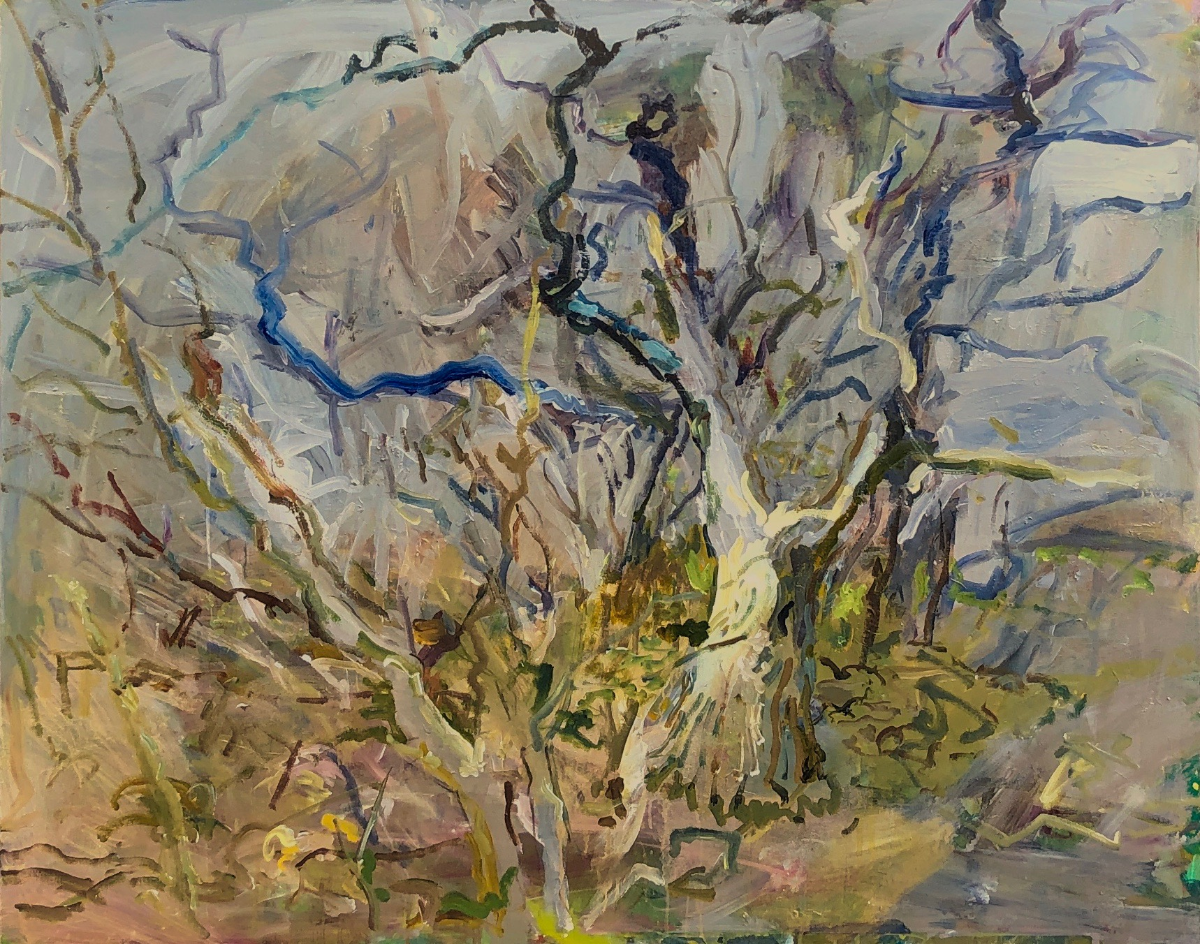 "Tree - Early Spring Acrylic on Canvas 48"" x 60"""