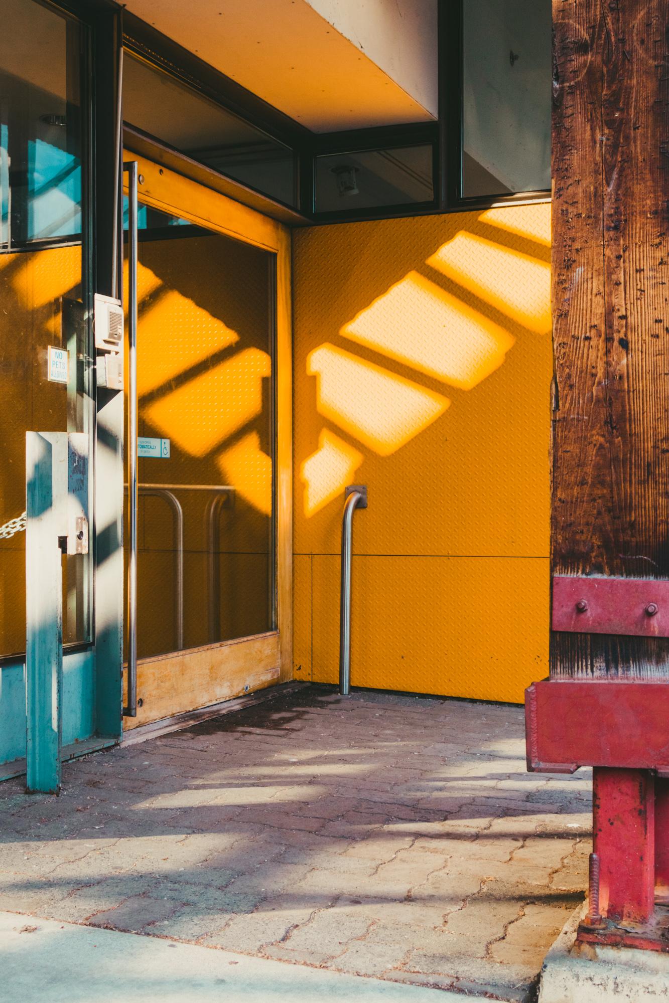 4_Rachel_Nixon_Red_Hook_Labs_Yellow_Corner.jpg