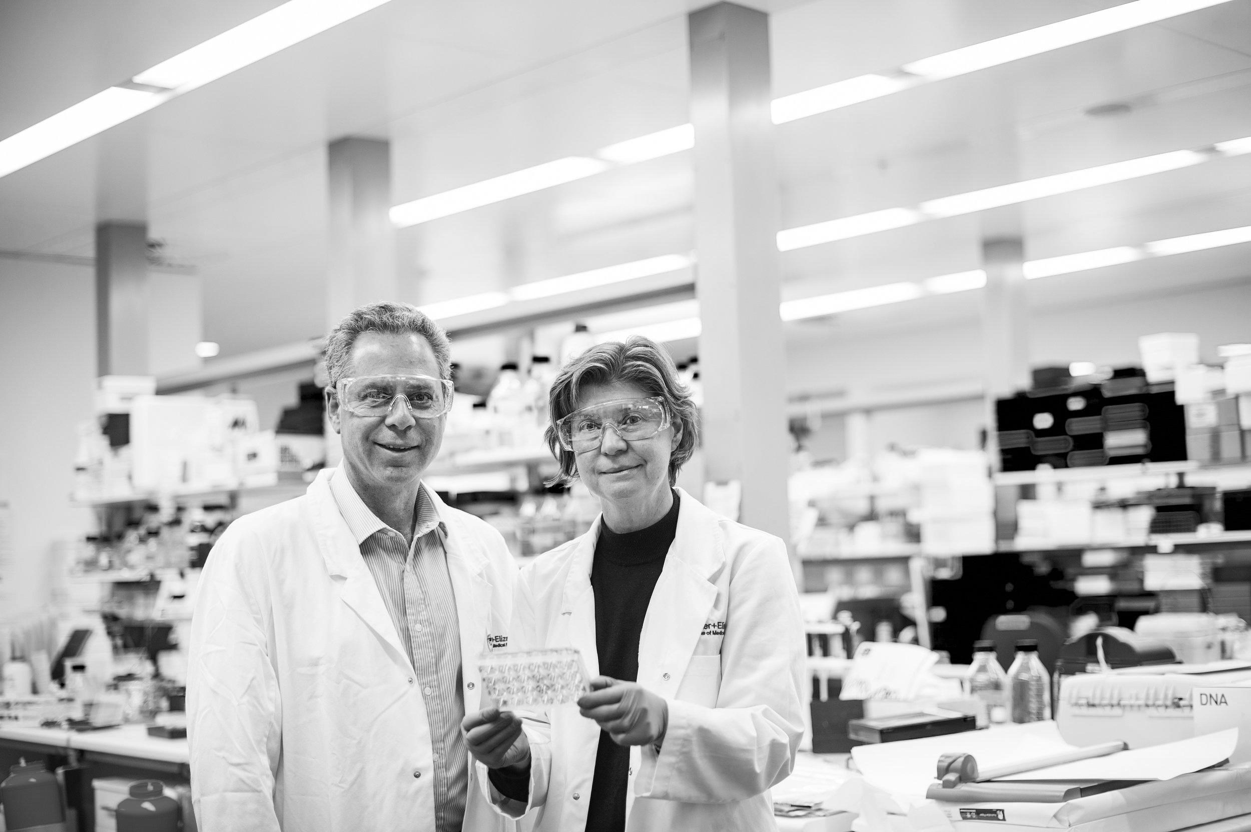 Professor Geoff Lindeman & Professor Jane Visvader