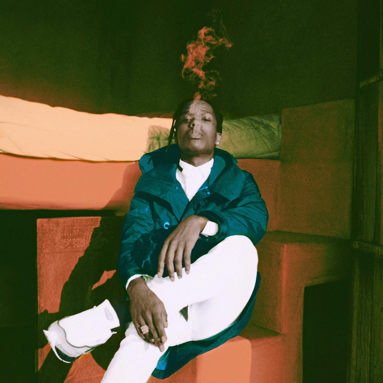5 - A$AP Rocky - Neil Krug.jpg