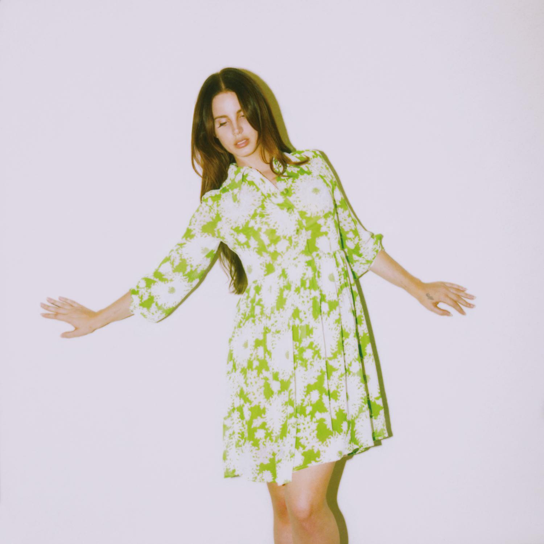 2 - Lana Del Rey - Neil Krug.jpg