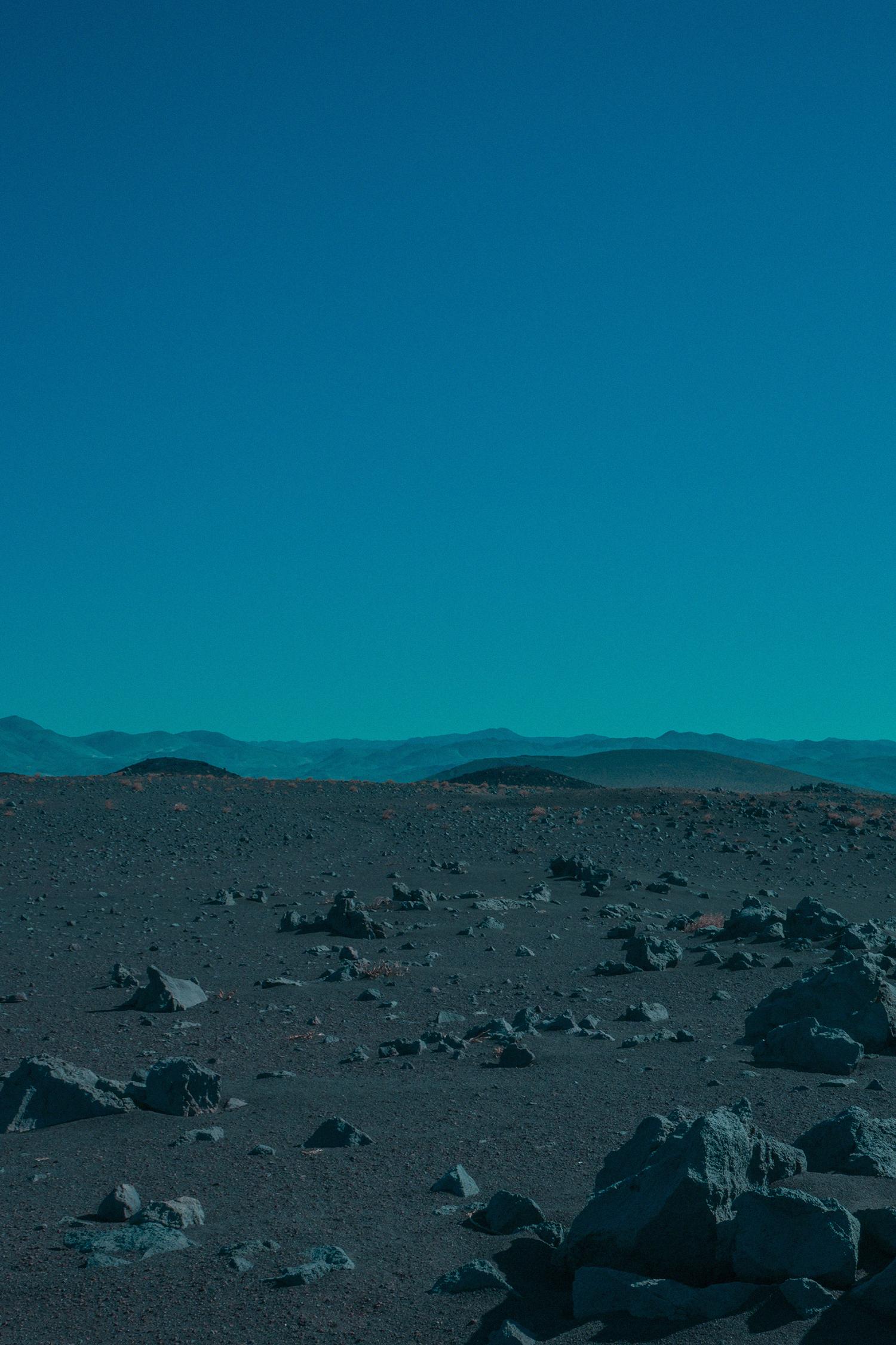 7 - Bonobo - Neil Krug.jpg