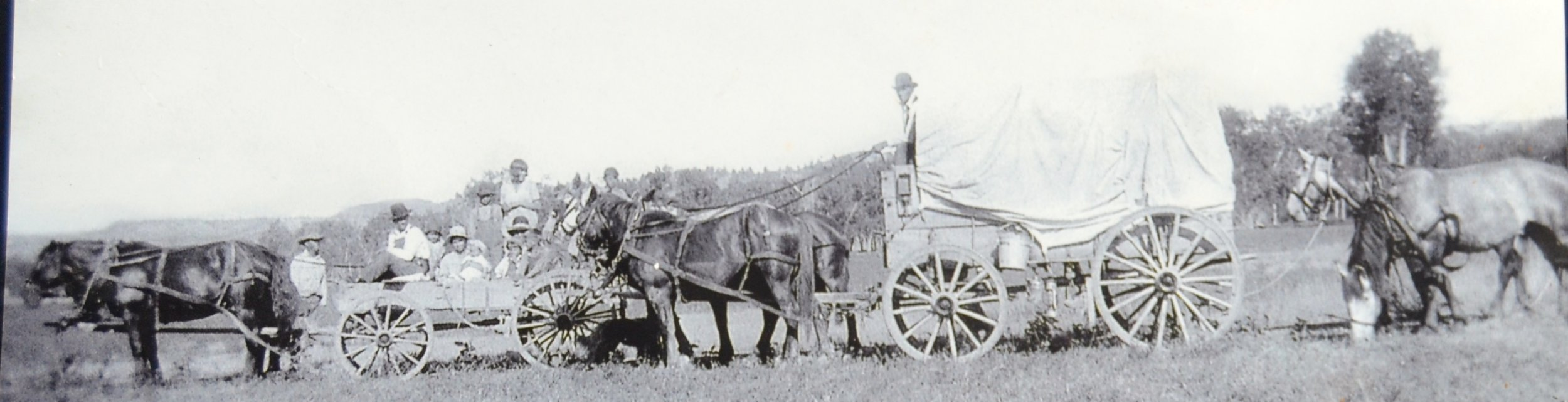 MM Matovich Ranch pioneers
