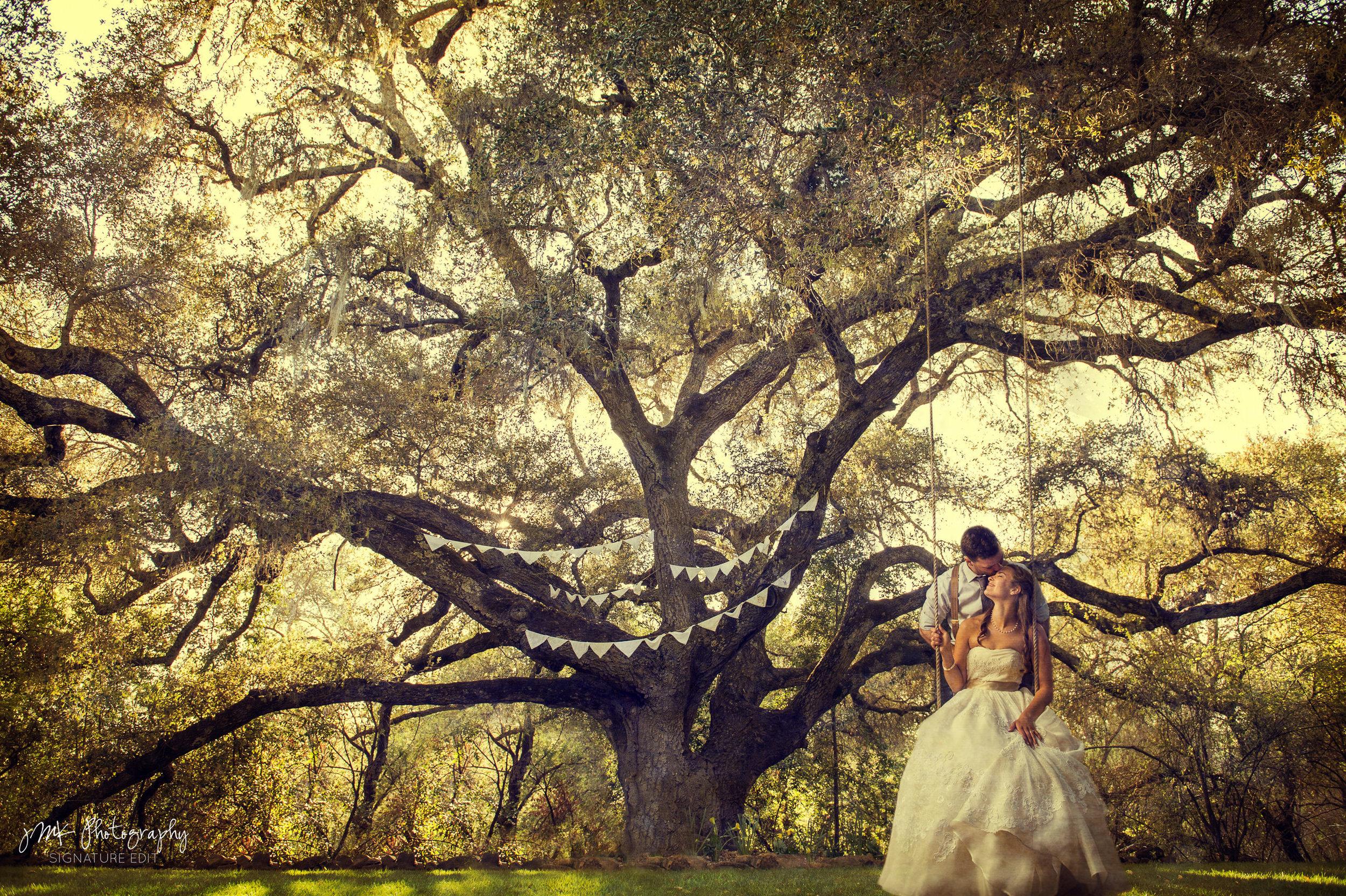 Montana-Wedding-Photographer-_DSC3525TT-2.jpg