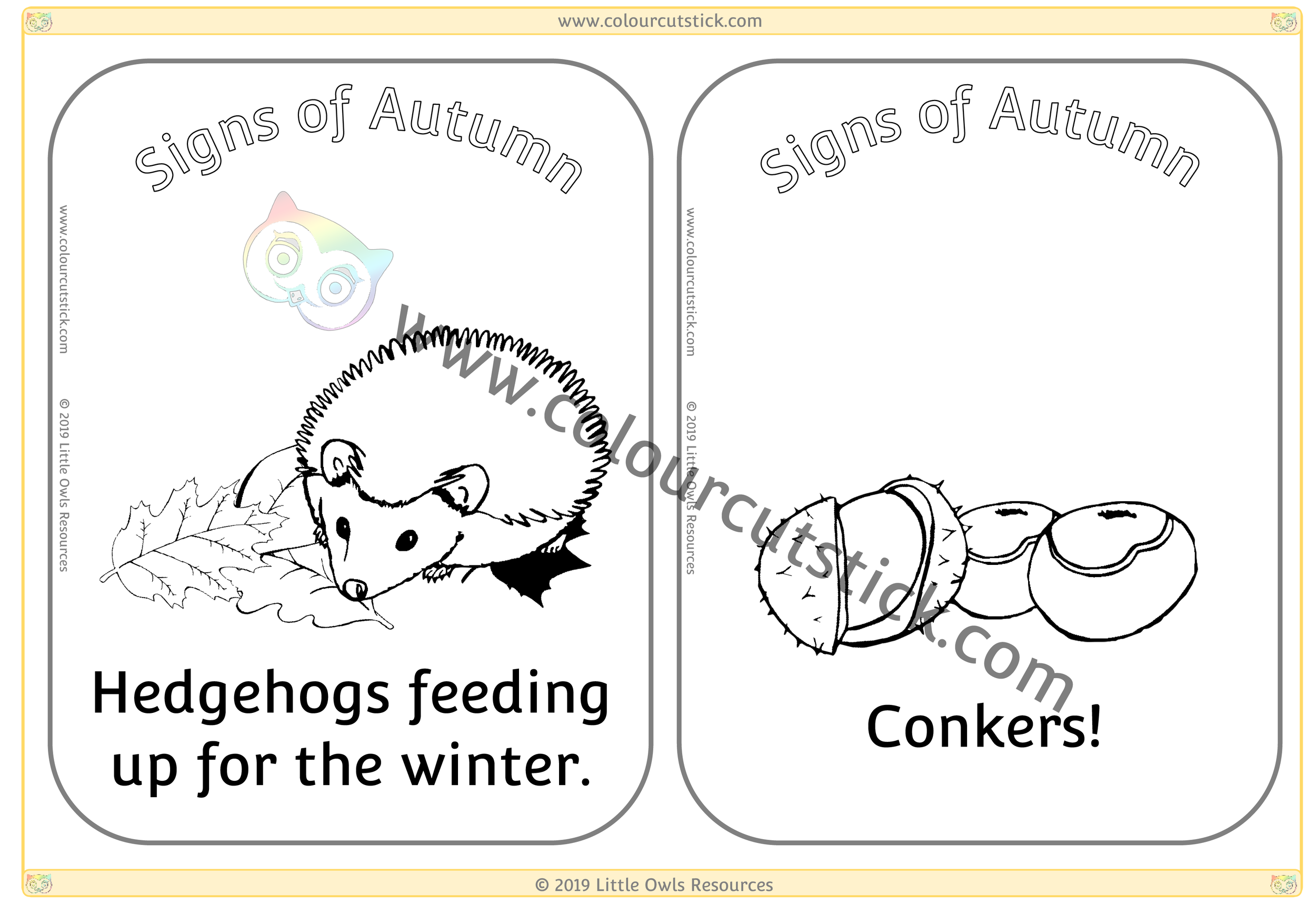 Hedgehogs feeding up for winter & Conkers -