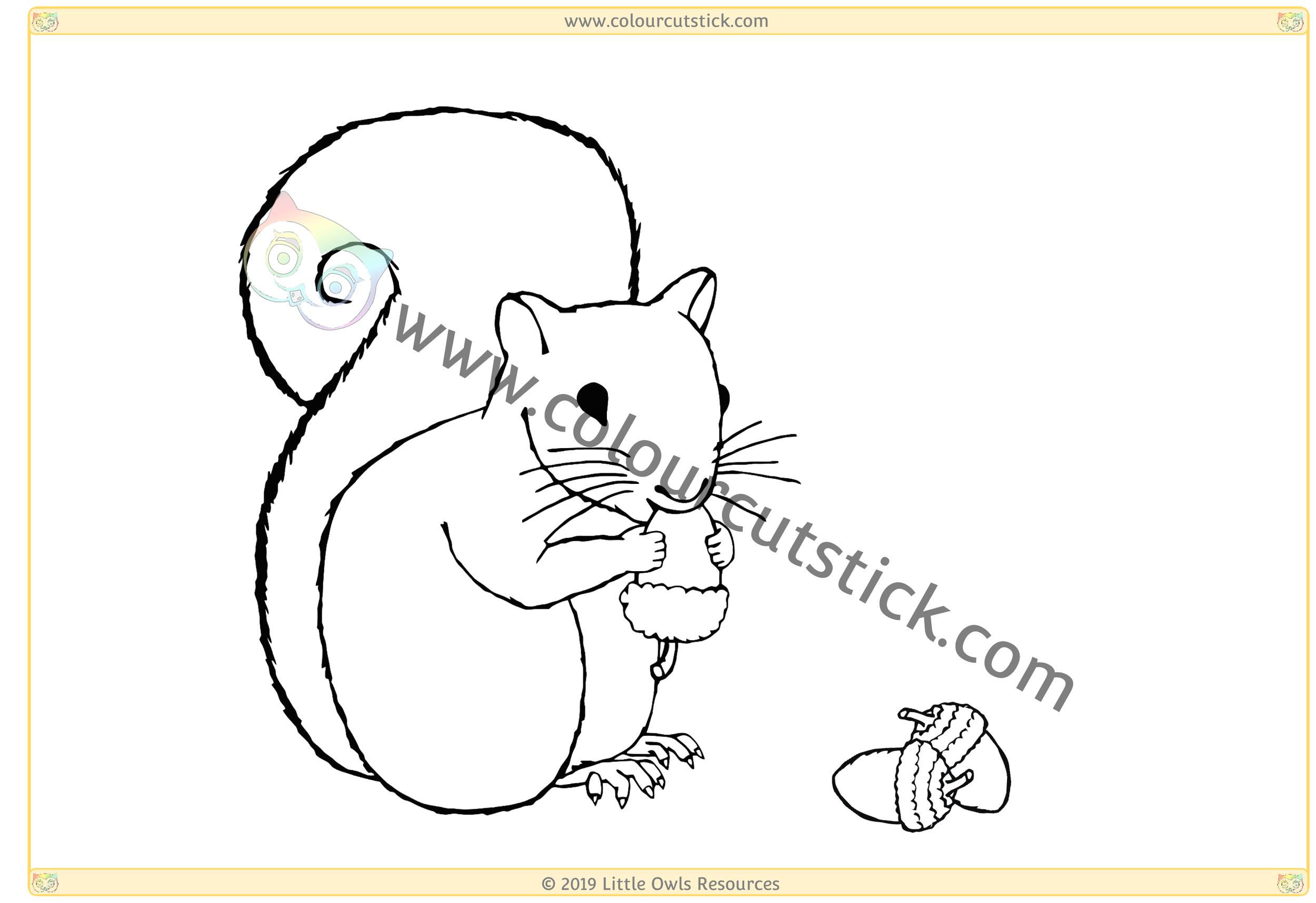 Squirrel with acorns -