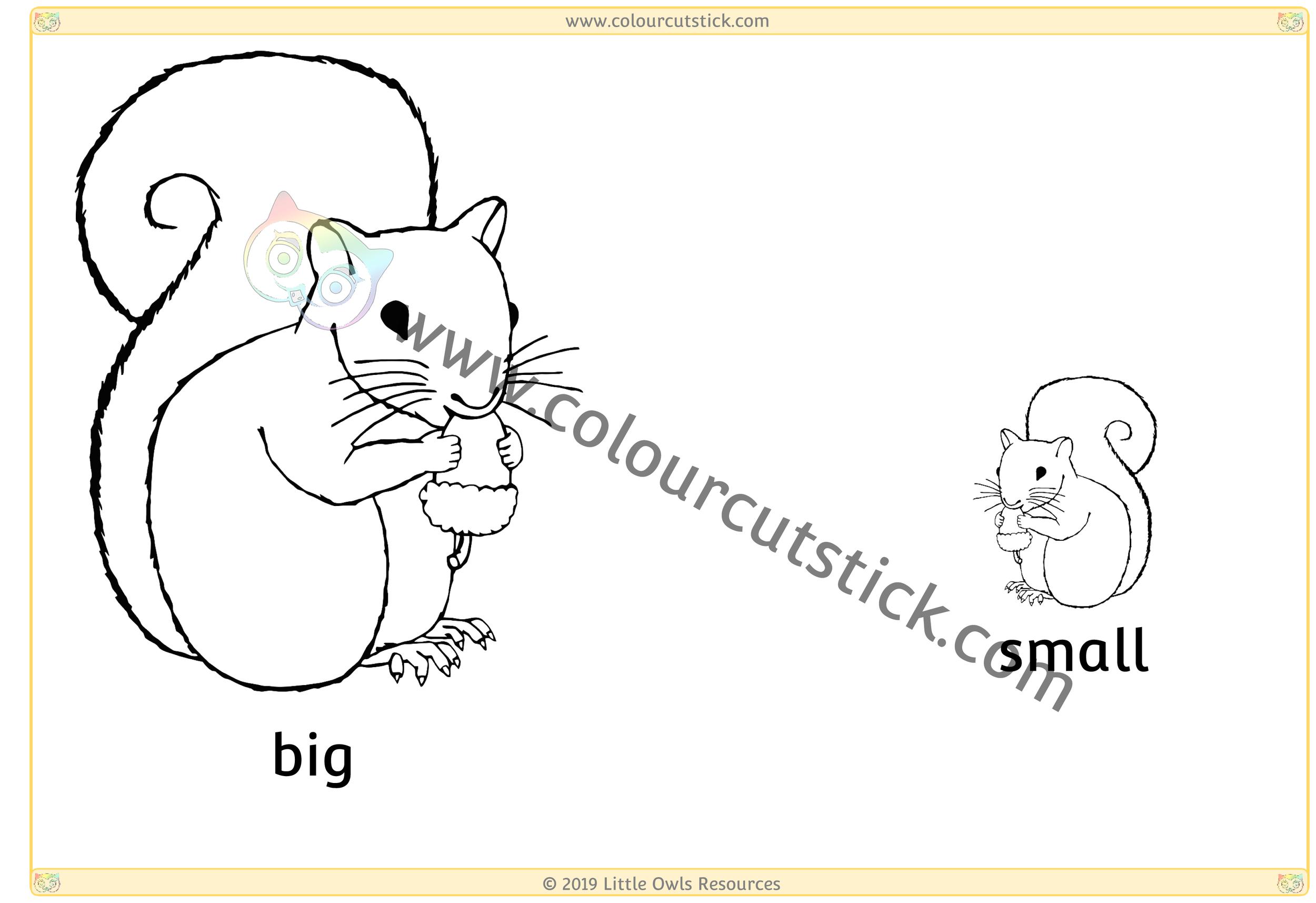 Squirrel - Big/Small -
