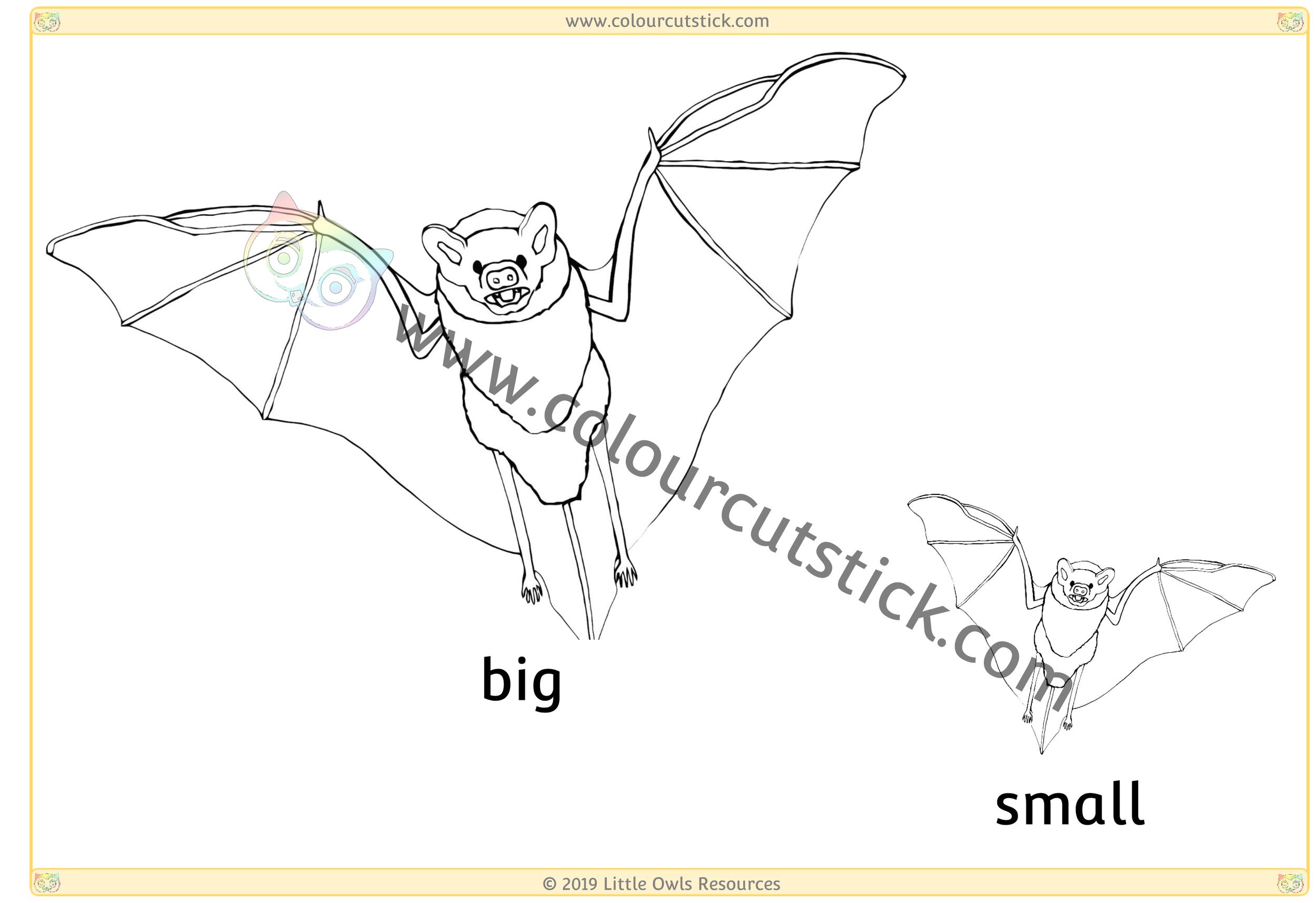 Bat - Big/Small -