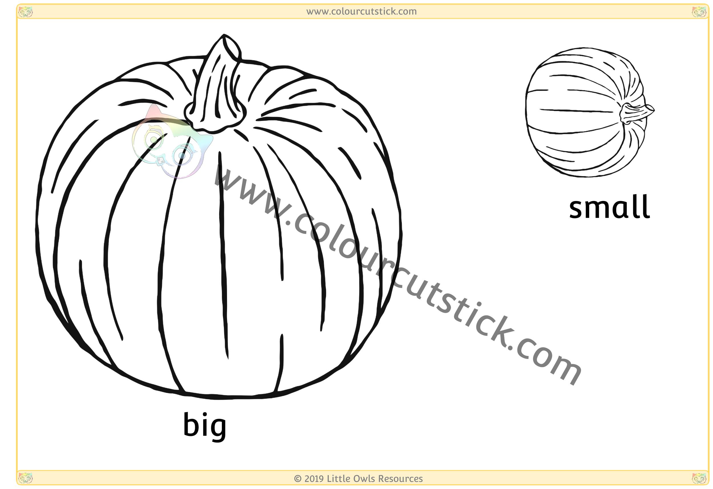 Pumpkin - Big/Small -