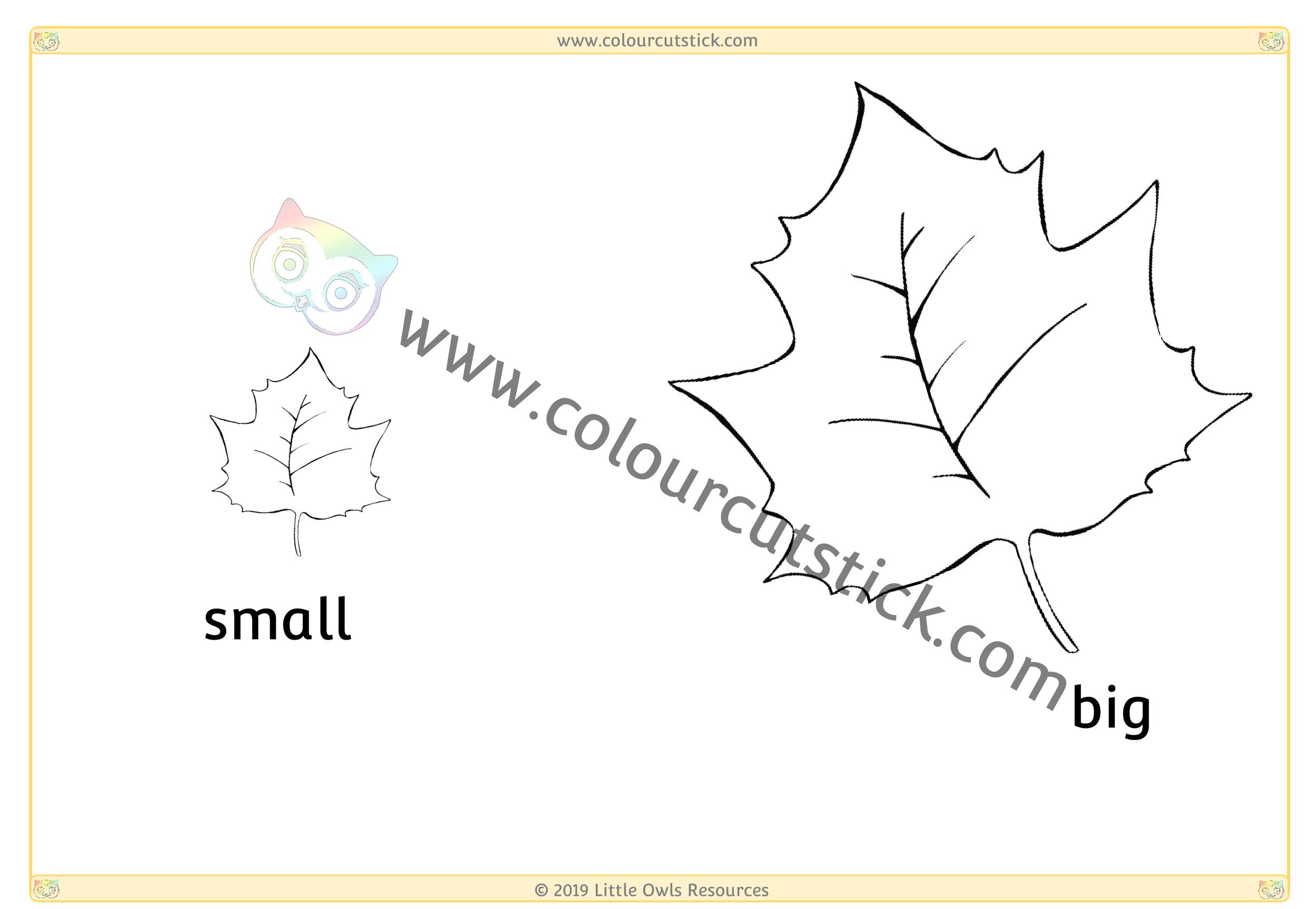 Leaf - Big/Small -