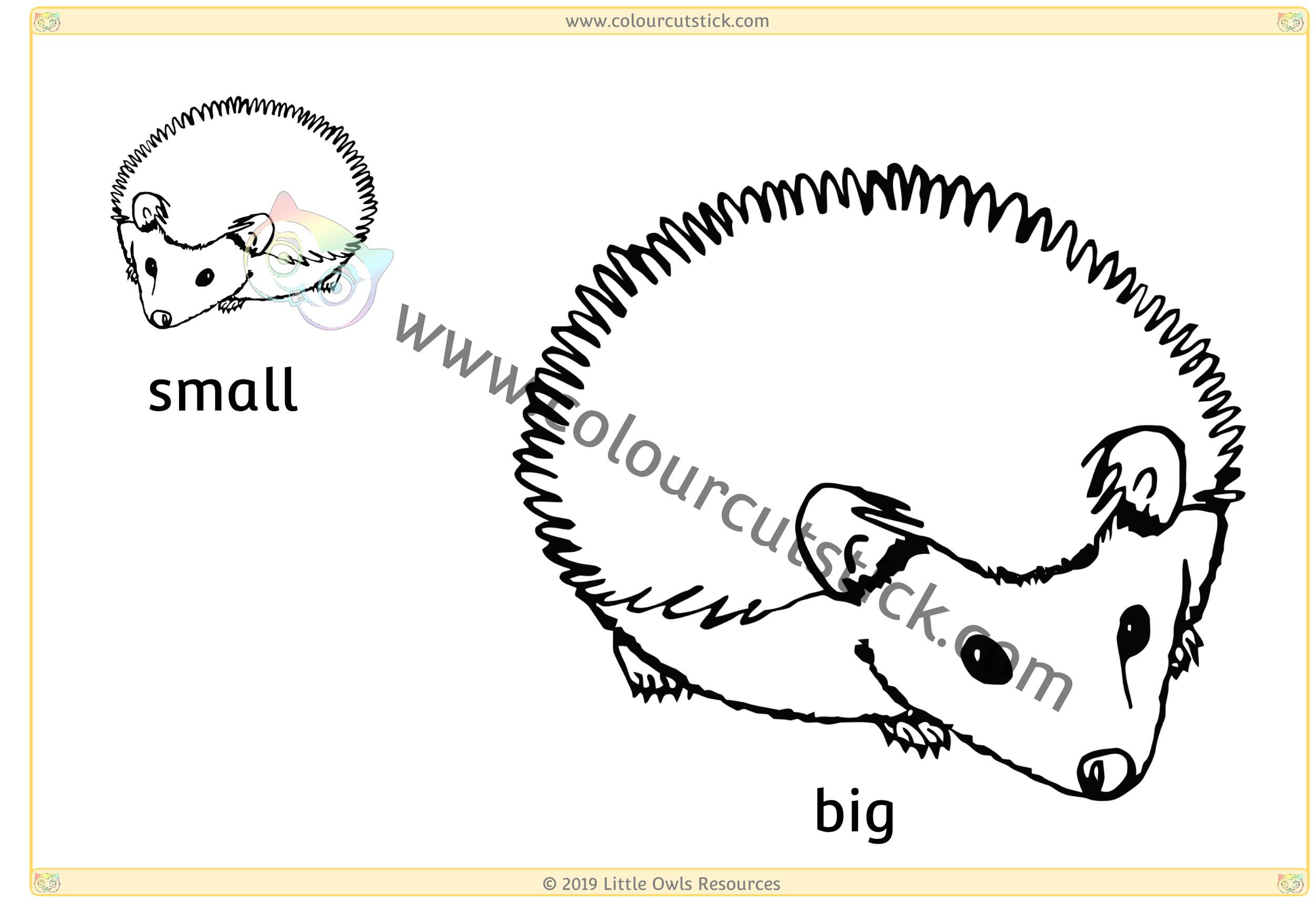 Hedgehog - Big/Small -
