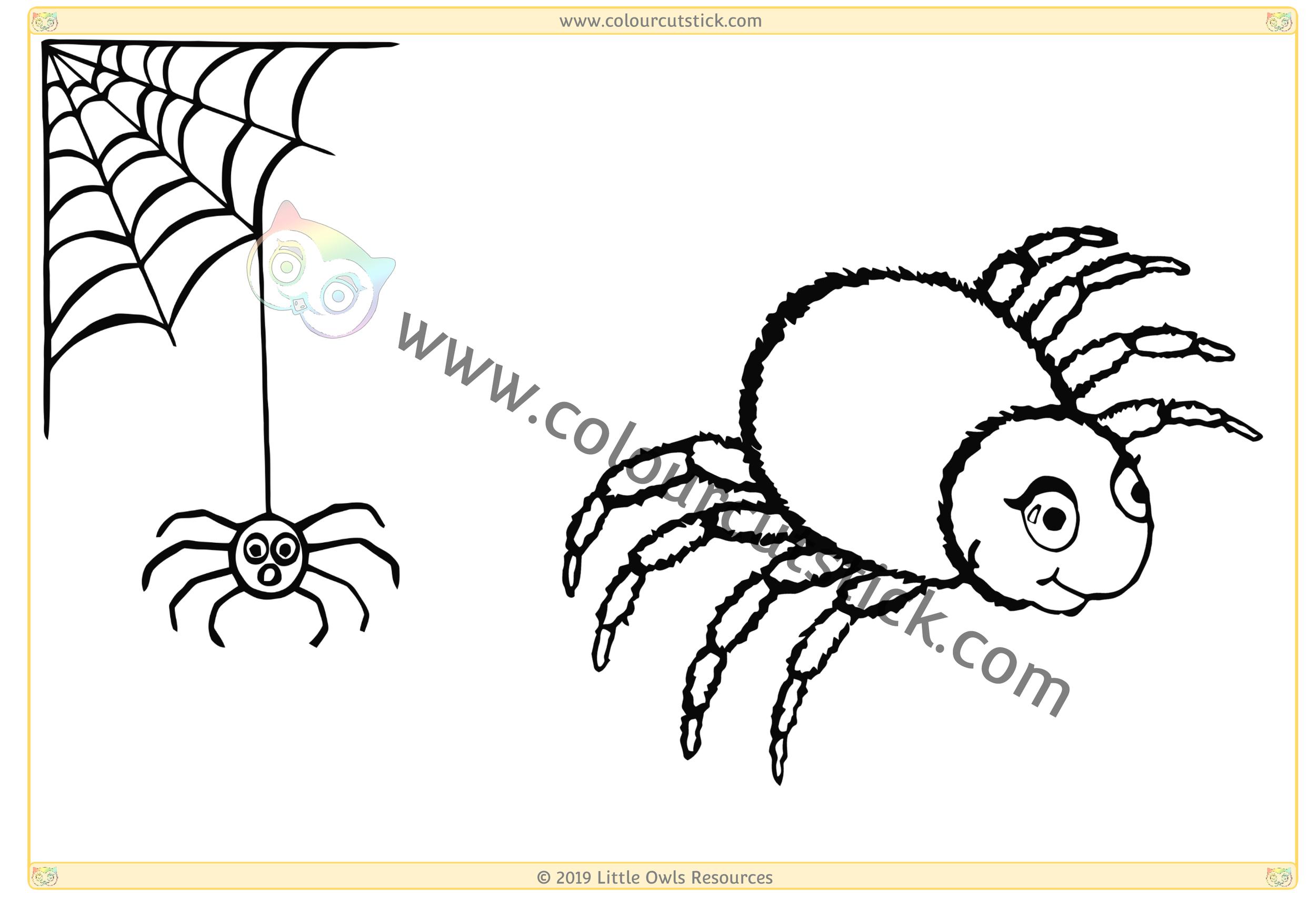 Spiders & Web -