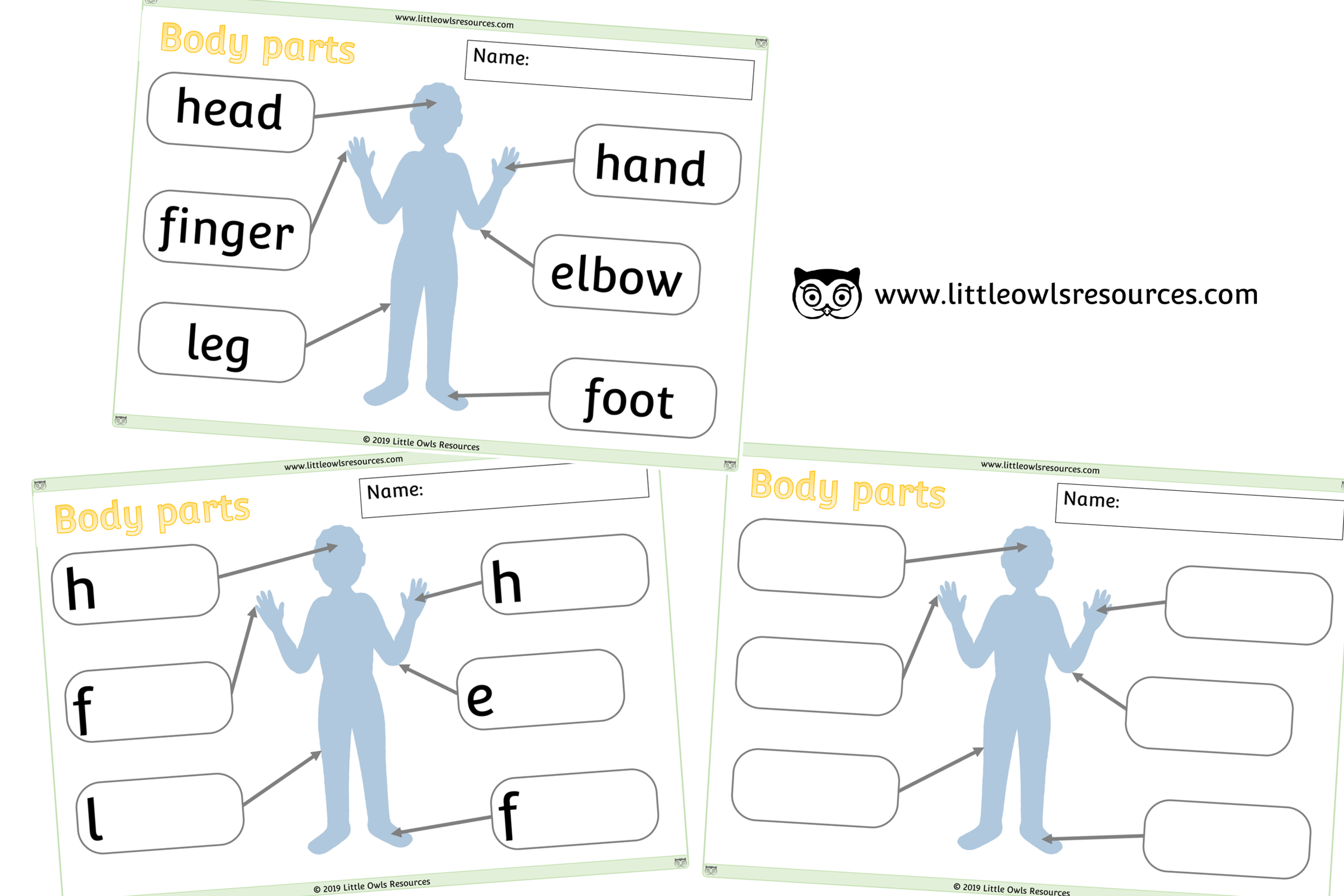 Body Parts Posters Cover.png