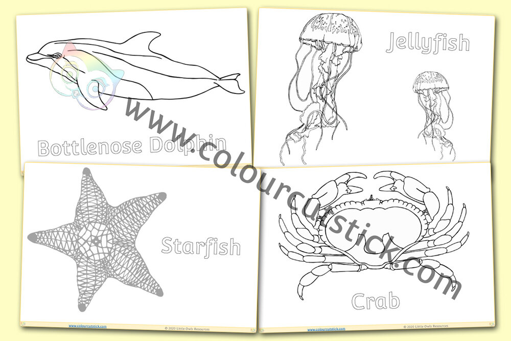 Free Printable Ocean Coloring Pages For Kids | 667x1000