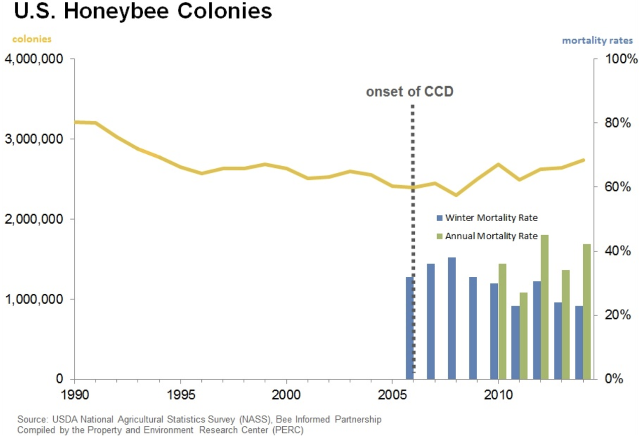 Bee colony graph.png