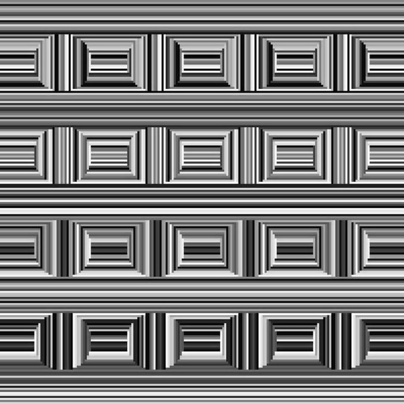 there-are-16-circles-in-this-image-1.jpg