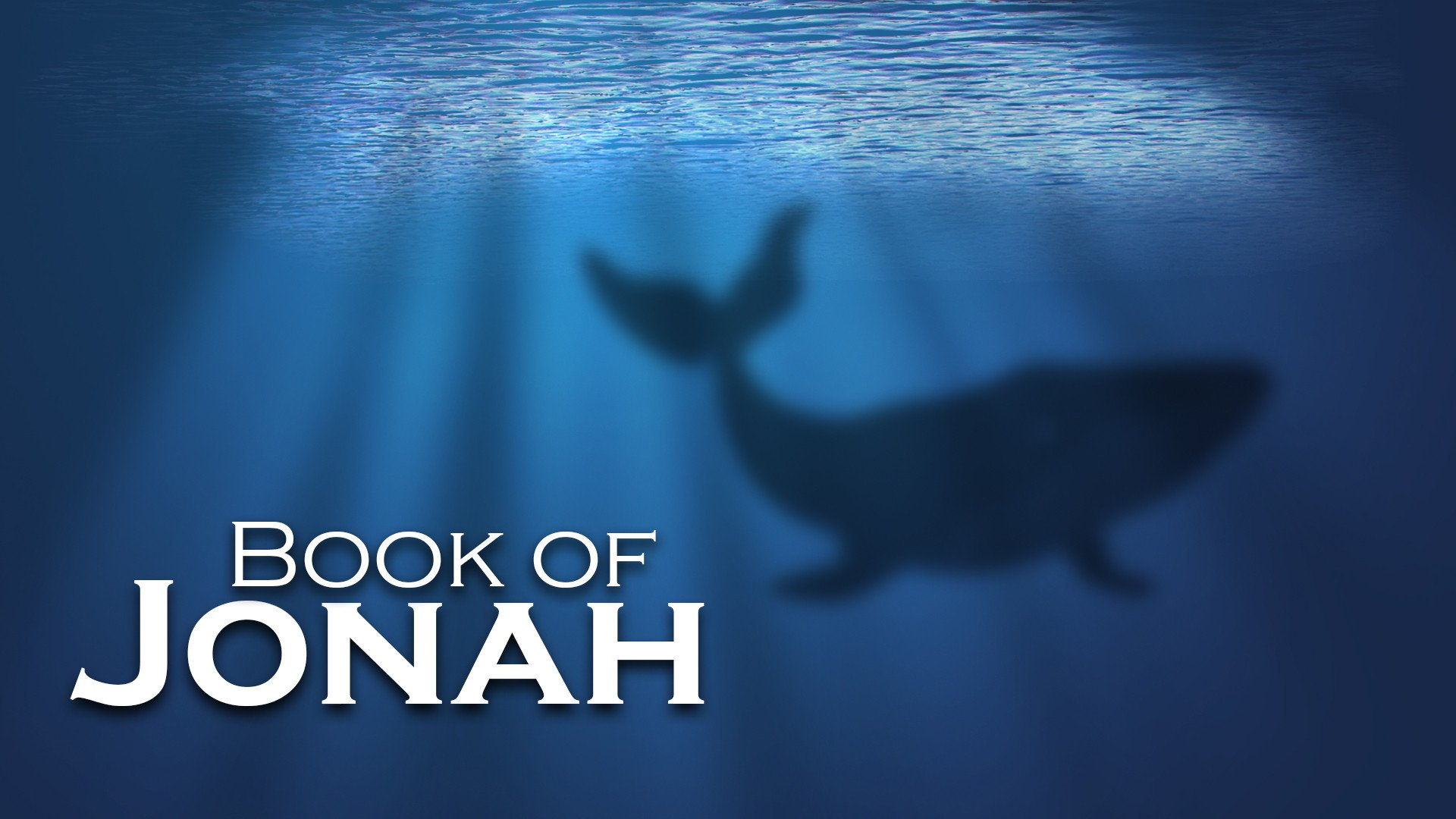 MTY_-_Book_of_Jonah_FINAL.jpg