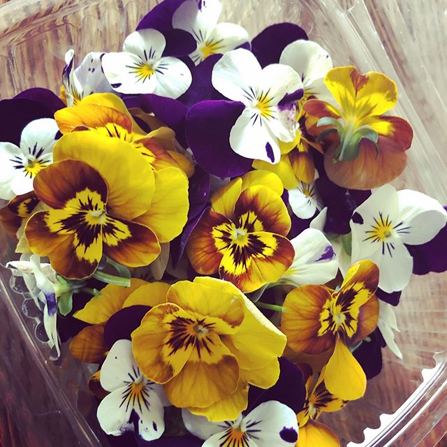 Freshly picked flowers from the garden!!! Book our pop up on our website or through our reservation link on our profile