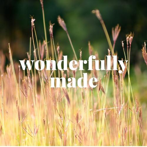 wonderfullymade-1.jpg
