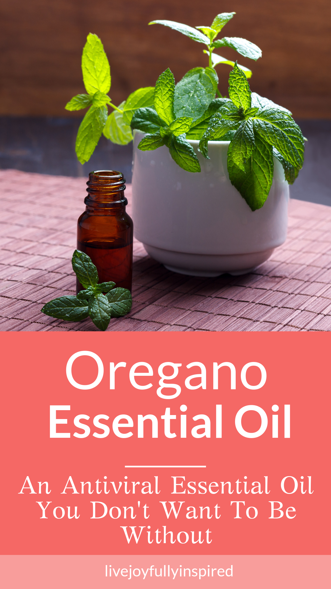 Oregano essential oil is an amazing antibacterial oil to use topically. It is found to be incredibly effective for healing wounds. It smells delicious and is effective for quick results. Oregano essential oil is a must-have for your essential oil pantry. #oreganoessentialoil #antiviral #tightmuscles