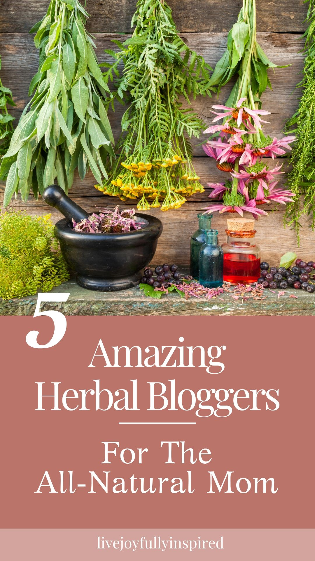 When it comes to creating and living an all-natural lifestyle, these bloggers excel in knowledge and abilities. This list contains 5 favorite herbal bloggers that every all-natural mom should follow. These ladies are amazing herbalists and create incredible DIY body products as well as teach you all you need to know about herbs, infusions, and making your own herbal remedies. #herbalblogger #diyremedies #herbs
