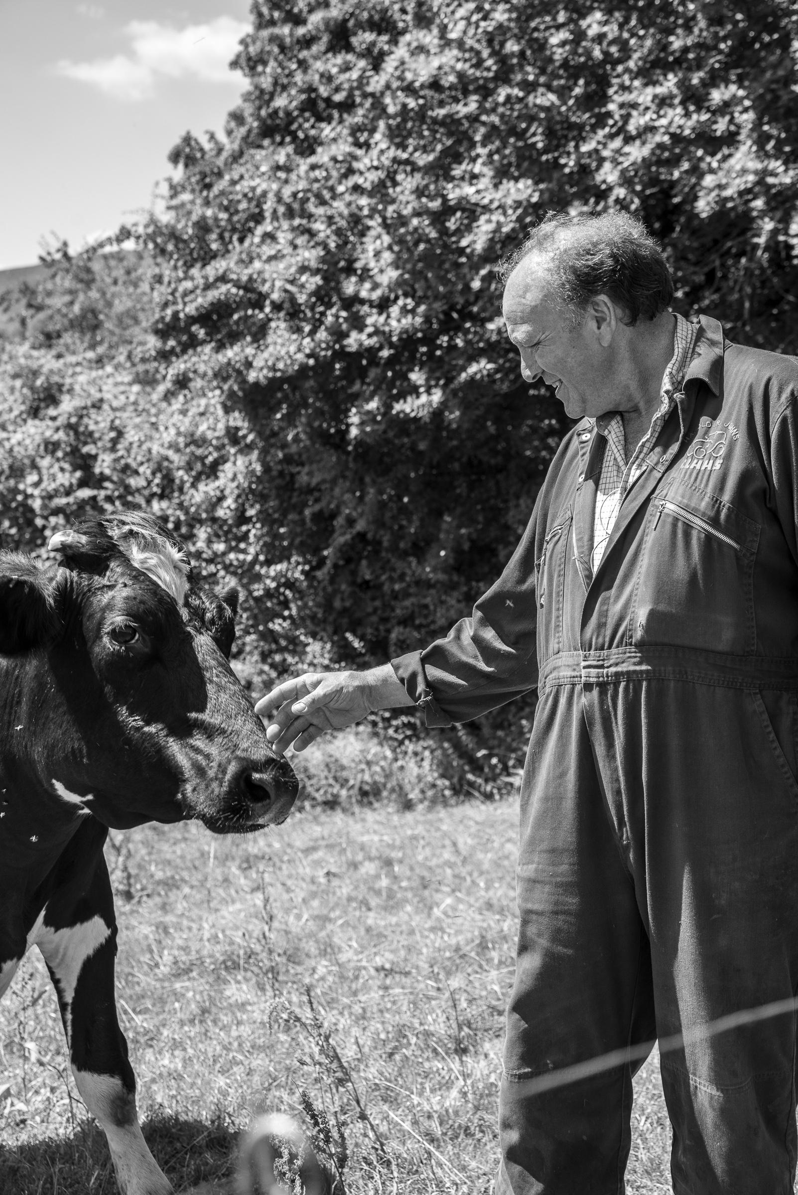 Puddleston-Herd-Clodock-2018-32.jpg