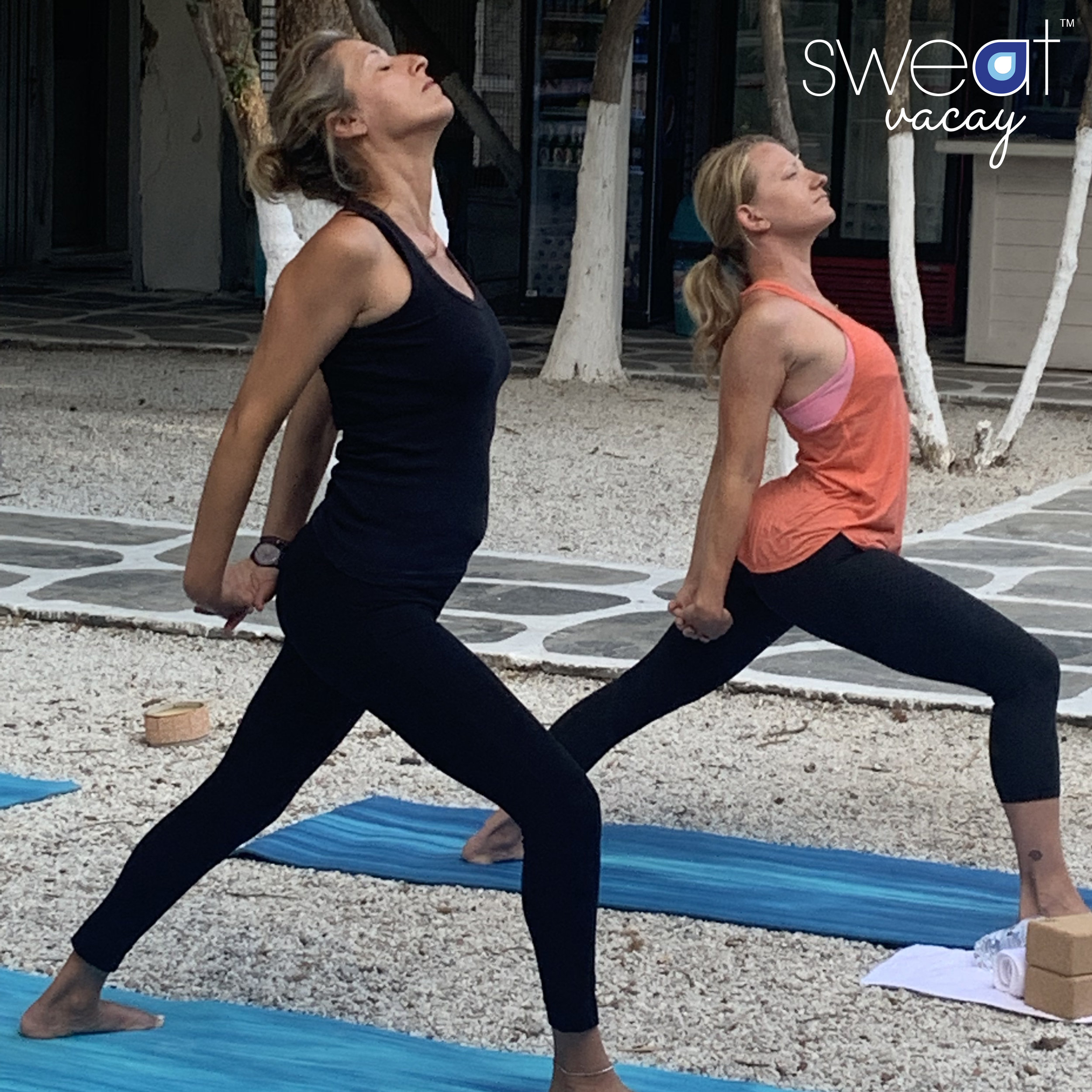 yoga CM 55.jpg