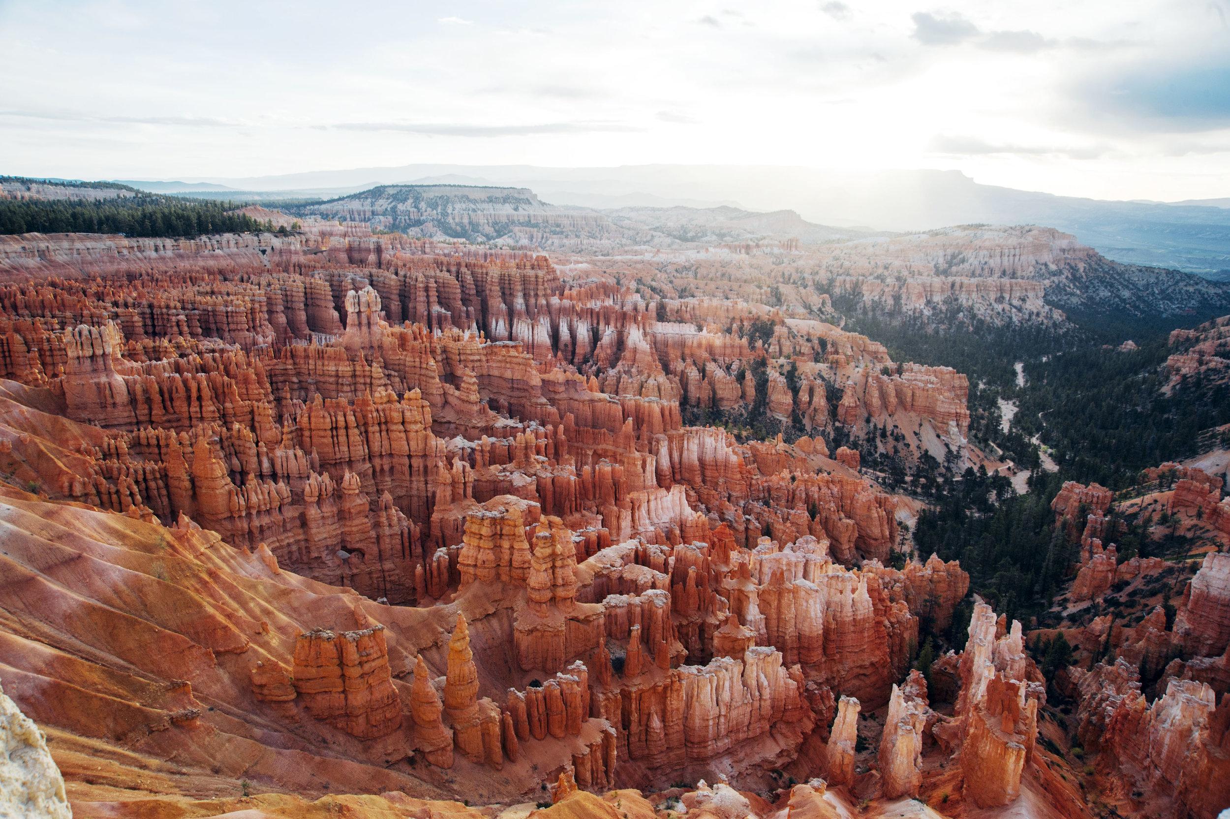 Bryce Canyon - Conoceremos las formaciones de piedra roja llamadas hoodos cuando estemos caminando por Bryce Canyon.