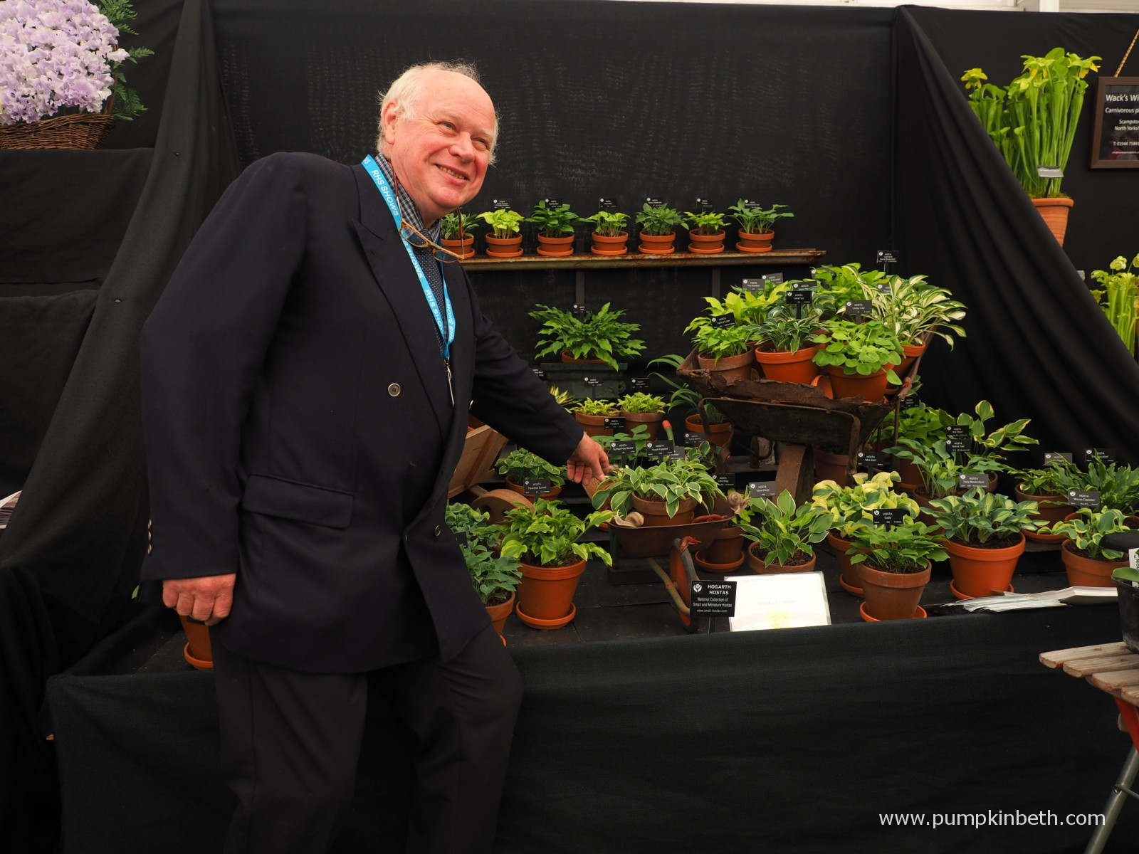 Jonathan Hogarth produces another, award winning stand of miniature hostas for the RHS Chelsea Flower Show.  Thank you to Beth Otway, of  Pumpkin Beth , for capturing this fantastic picture.