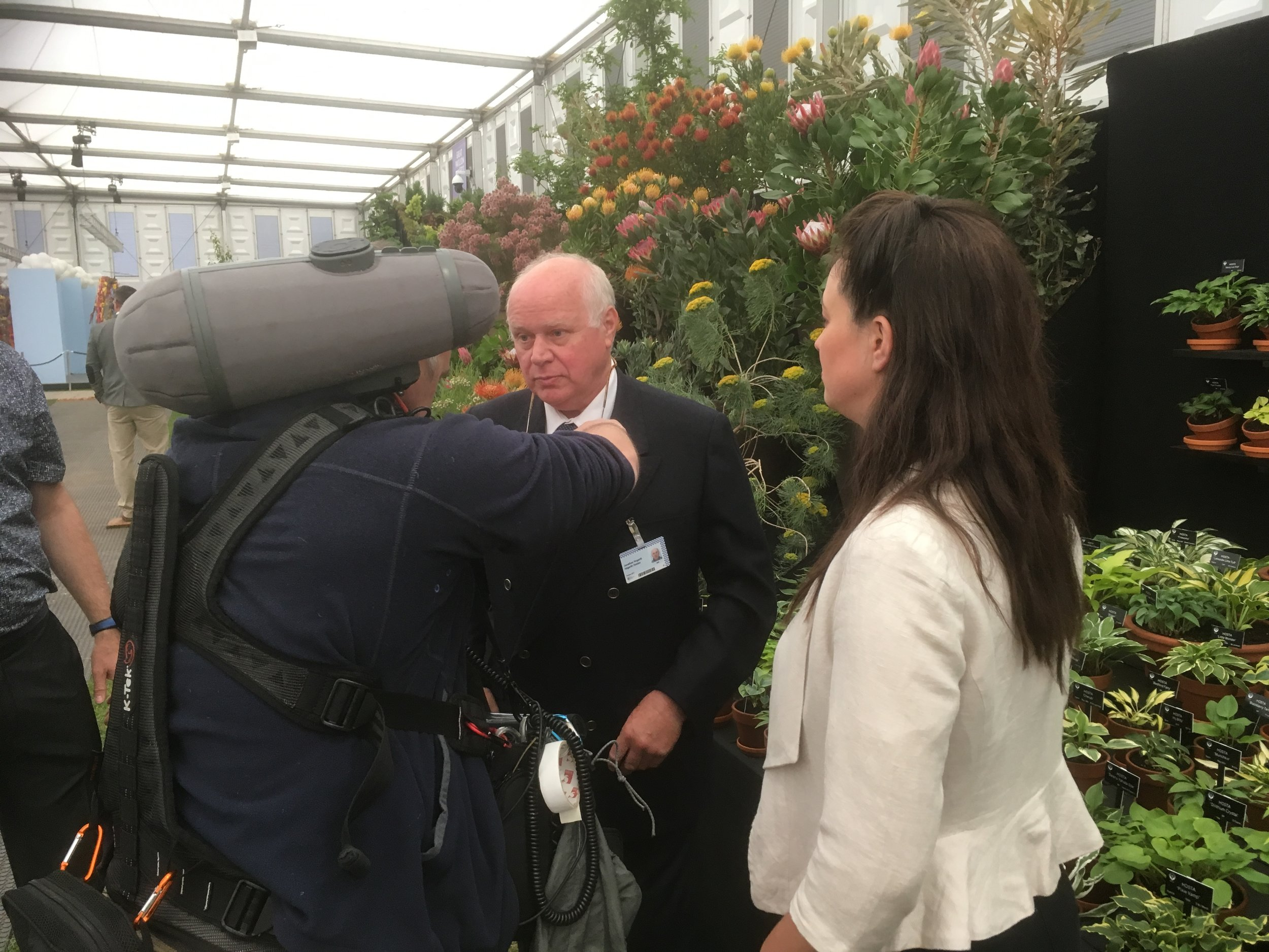 Jonathan Preparing for an Interview at RHS Chelsea