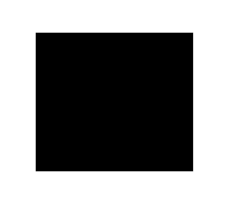 Pioneer_Logo-Black-on-Transparent.png
