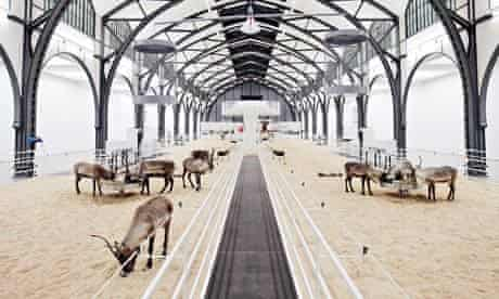 The Deers of Perception